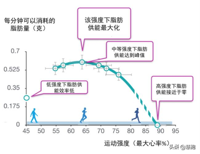 什么运动减肥最有效(跑步是最有效的减肥运动)